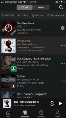 Über das Download-Icon in der rechten unteren Ecke des Bildes wird der Download gestartet